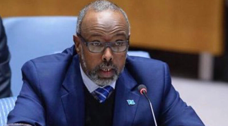 somali government