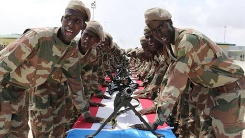 Somali and Libyan